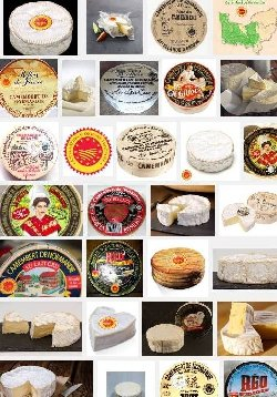 Camembert de Normandie (aoc-aop)
